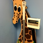 picture of girafe scale